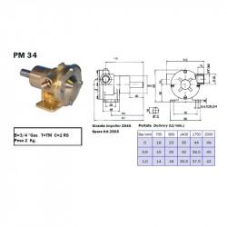 Ancor PM34 Pompa Acqua std....