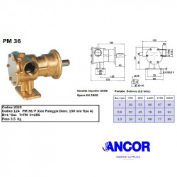 "Ancor PM36 water pump std. 1"""