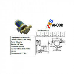 Ancor EP35 water pump
